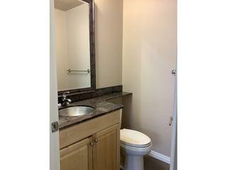 Photo 14: 9925 83 Avenue in Edmonton: Condo for rent
