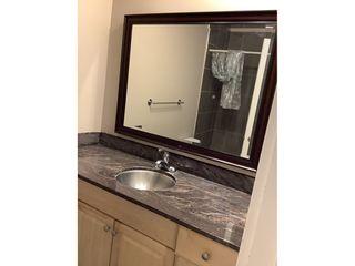 Photo 12: 9925 83 Avenue in Edmonton: Condo for rent