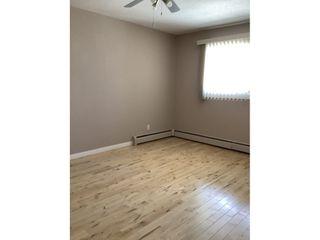 Photo 10: 9925 83 Avenue in Edmonton: Condo for rent