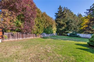 Photo 4: 4101 Carey Rd in : SW Marigold House for sale (Saanich West)  : MLS®# 857802