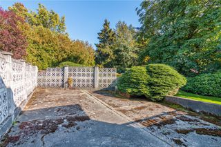 Photo 6: 4101 Carey Rd in : SW Marigold House for sale (Saanich West)  : MLS®# 857802