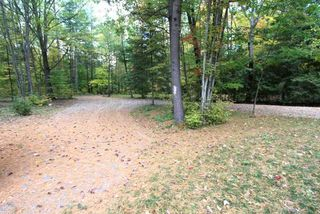 Photo 14: 131 Stanley Road in Kawartha Lakes: Rural Eldon House (Bungalow) for sale : MLS®# X4948257