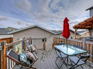 Photo 26: 1021 Kingston Crescent SE: Airdrie Detached for sale : MLS®# A1042277