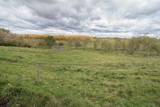 Photo 32: 49260 RGE RD 224: Rural Leduc County House for sale : MLS®# E4186545