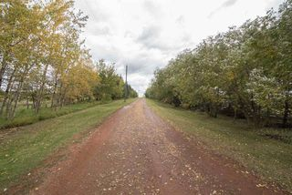 Photo 38: 49260 RGE RD 224: Rural Leduc County House for sale : MLS®# E4186545