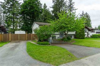 Main Photo: 4415 203 Street in Langley: Langley City House for sale : MLS®# R2458333