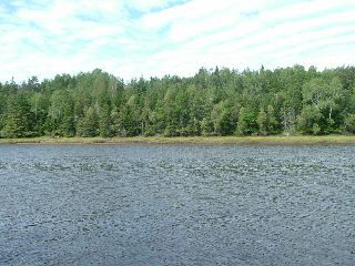 Photo 2: Easy Street in Wallace River West: 102N-North Of Hwy 104 Vacant Land for sale (Northern Region)  : MLS®# 202010385