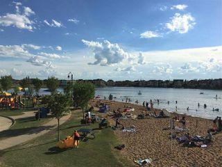 Photo 44: 7207 SUMMERSIDE GRANDE Boulevard in Edmonton: Zone 53 House for sale : MLS®# E4203266