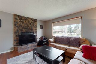 Photo 15: 2923 89 Street in Edmonton: Zone 29 House for sale : MLS®# E4198083