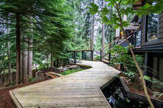 "Photo 38: 5845 237A Street in Langley: Salmon River House for sale in ""Tall Timber Estates"" : MLS®# R2495594"