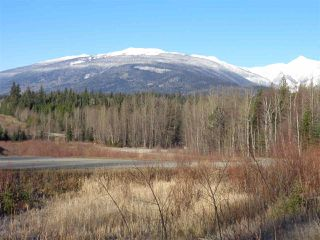 Photo 4: LOT A 16 Highway in McBride: McBride - Rural West Land for sale (Robson Valley (Zone 81))  : MLS®# R2496827