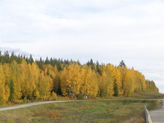 Photo 2: LOT A 16 Highway in McBride: McBride - Rural West Land for sale (Robson Valley (Zone 81))  : MLS®# R2496827