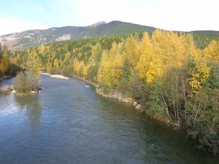 Photo 9: LOT A 16 Highway in McBride: McBride - Rural West Land for sale (Robson Valley (Zone 81))  : MLS®# R2496827