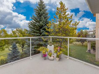 Photo 42: 105 HAMPTONS Gardens NW in Calgary: Hamptons Detached for sale : MLS®# A1034022