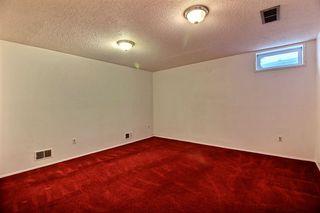 Photo 12: 8307 190 Street in Edmonton: Zone 20 House for sale : MLS®# E4184555