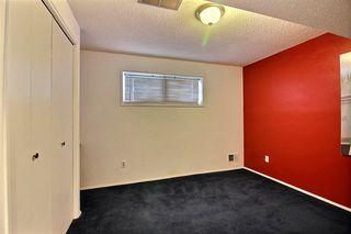 Photo 10: 8307 190 Street in Edmonton: Zone 20 House for sale : MLS®# E4184555