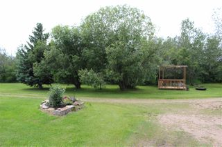 Photo 29: 57019 RGE RD 230: Rural Sturgeon County House for sale : MLS®# E4186437