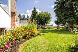 Photo 10: 10543 30 Avenue N in Edmonton: Zone 16 House for sale : MLS®# E4217273
