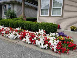 "Photo 37: 13 45819 STEVENSON Road in Chilliwack: Sardis East Vedder Rd Townhouse for sale in ""Villas at Sardis Park"" (Sardis)  : MLS®# R2507353"