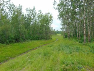 Photo 10: 27331 Township Road 481: Rural Leduc County Rural Land/Vacant Lot for sale : MLS®# E4218390