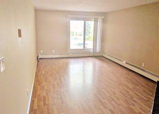 Photo 4: 101 10033 89 Avenue in Edmonton: Zone 15 Condo for sale : MLS®# E4167833