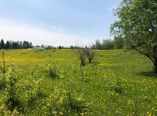 Photo 43: 17 27420 TWP RD 540 Road: Rural Parkland County House for sale : MLS®# E4184392