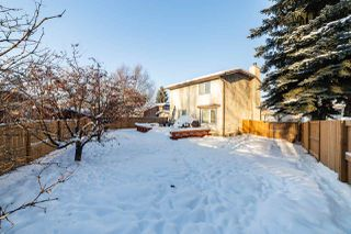 Photo 31: 41 Patterson Crescent: St. Albert House for sale : MLS®# E4187971