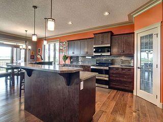 Photo 17: 117 McDowell Wynd: Leduc House for sale : MLS®# E4203495