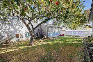 Photo 38: 4312 85 Street in Edmonton: Zone 29 House for sale : MLS®# E4218186