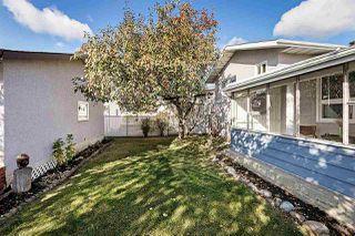 Photo 37: 4312 85 Street in Edmonton: Zone 29 House for sale : MLS®# E4218186
