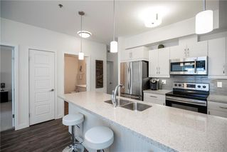 Photo 4: 204 10 Hill Grove Point in Winnipeg: Bridgwater Centre Condominium for sale (1R)  : MLS®# 202026193