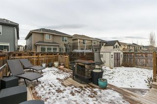 Photo 37: 56 AUBURN SHORES Manor SE in Calgary: Auburn Bay Detached for sale : MLS®# A1052787