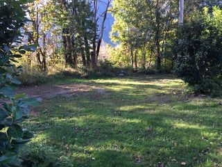 Photo 6: 59945 HUNTER CREEK Road in Hope: Hope Laidlaw Land for sale : MLS®# R2437627