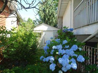 Photo 16: 11825 229TH Street in Maple Ridge: East Central House for sale : MLS®# R2472273