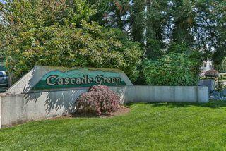 "Photo 5: 122 2962 TRETHEWEY Street in Abbotsford: Abbotsford West Condo for sale in ""CASCADE GREEN"" : MLS®# R2473837"