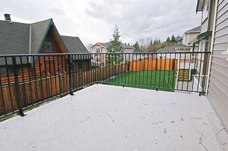 Photo 14: 23808 133RD Ave in Maple Ridge: Silver Valley House for sale : MLS®# V624670