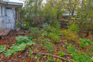 Photo 22: 1564 San Juan Ave in : SE Gordon Head House for sale (Saanich East)  : MLS®# 858060