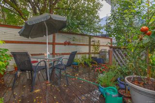 Photo 23: 1564 San Juan Ave in : SE Gordon Head House for sale (Saanich East)  : MLS®# 858060