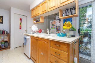 Photo 8: 1564 San Juan Ave in : SE Gordon Head House for sale (Saanich East)  : MLS®# 858060