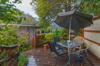Photo 24: 1564 San Juan Ave in : SE Gordon Head House for sale (Saanich East)  : MLS®# 858060