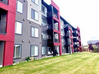 Photo 13: 243 348 WINDERMERE Road in Edmonton: Zone 56 Condo for sale : MLS®# E4218115