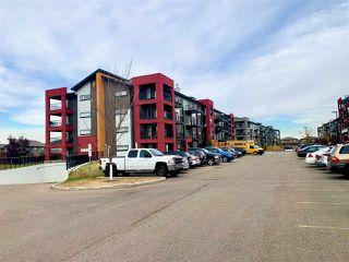 Photo 11: 243 348 WINDERMERE Road in Edmonton: Zone 56 Condo for sale : MLS®# E4218115