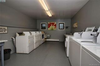 Photo 24: 215 1680 Poplar Ave in VICTORIA: SE Mt Tolmie Condo for sale (Saanich East)  : MLS®# 830693