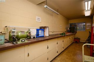 Photo 29: 215 1680 Poplar Ave in VICTORIA: SE Mt Tolmie Condo for sale (Saanich East)  : MLS®# 830693