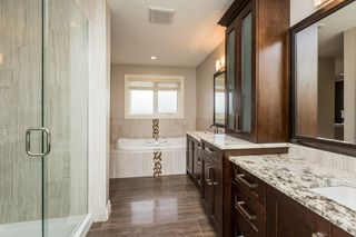 Photo 17: 513 CALLAGHAN Point in Edmonton: Zone 55 House for sale : MLS®# E4183100