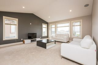 Photo 14: 513 CALLAGHAN Point in Edmonton: Zone 55 House for sale : MLS®# E4183100