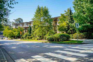 Photo 28: 419 1633 MACKAY Avenue in North Vancouver: Pemberton NV Condo for sale : MLS®# R2492154