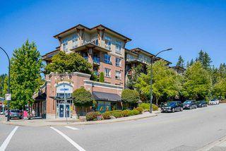Photo 30: 419 1633 MACKAY Avenue in North Vancouver: Pemberton NV Condo for sale : MLS®# R2492154