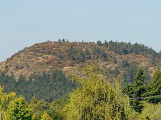 Photo 21: 4294 Torquay Dr in : SE Gordon Head House for sale (Saanich East)  : MLS®# 855333