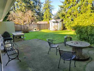 "Photo 15: 20023 36A Avenue in Langley: Brookswood Langley House for sale in ""Brookswood"" : MLS®# R2420485"